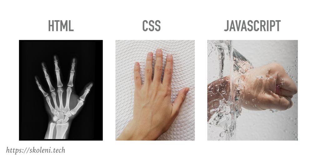 HTML, CSS, Javascript pro recruitery